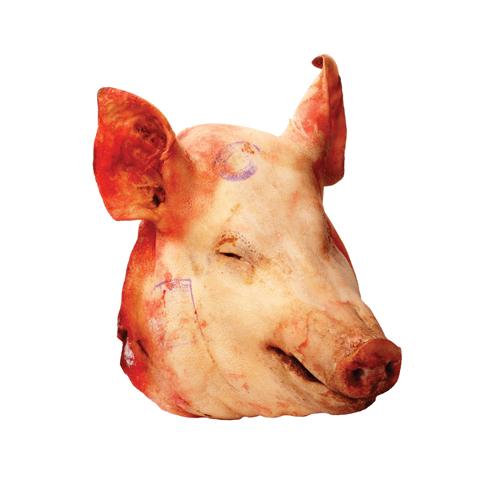 Pork Head / Pig Head - SunPork Fresh Foods - Australian Pork Export