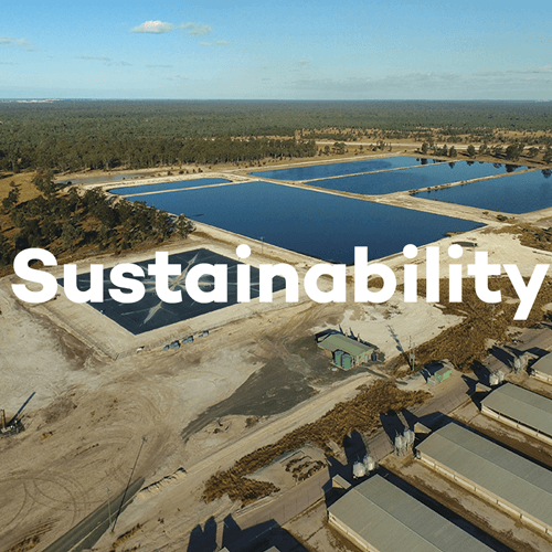 About SunPork - Sustainability Practices - 100% Australian Pork Supplier